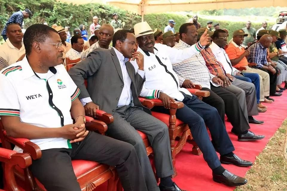 NASA should now be registered as a political party - Kalonzo
