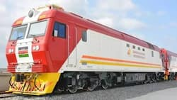 """William Ruto Dismisses Jimmy Wanjigi's Claims SGR Costs Were Inflated: """"We Rejected His Designs"""""""