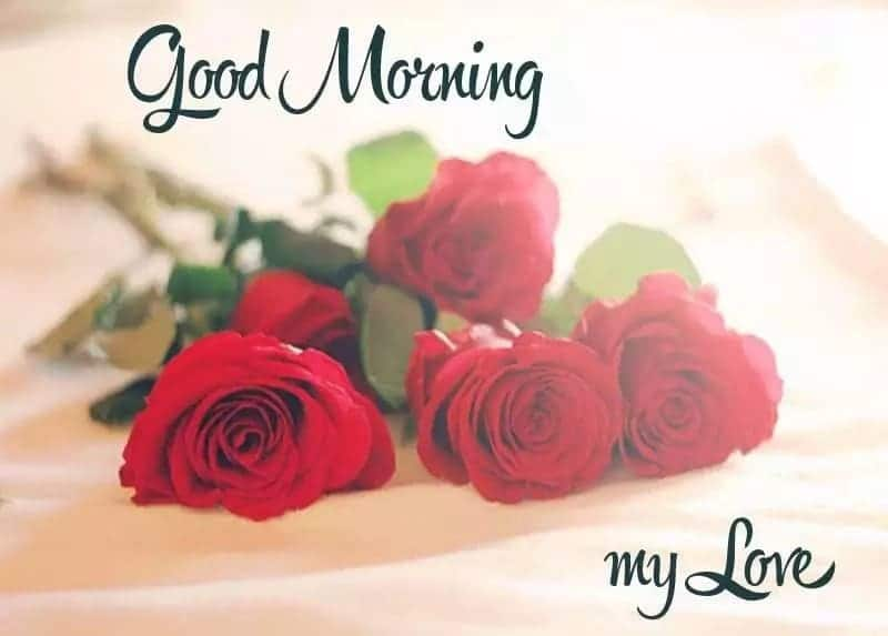 Romantic good morning messages for him ▷ Tuko co ke
