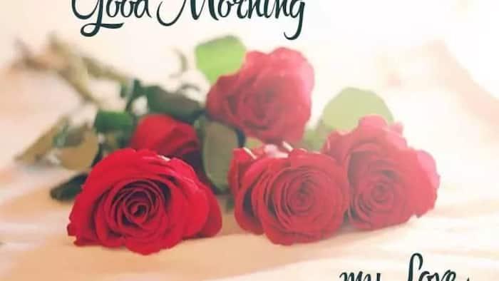 Cute good morning for your boyfriend