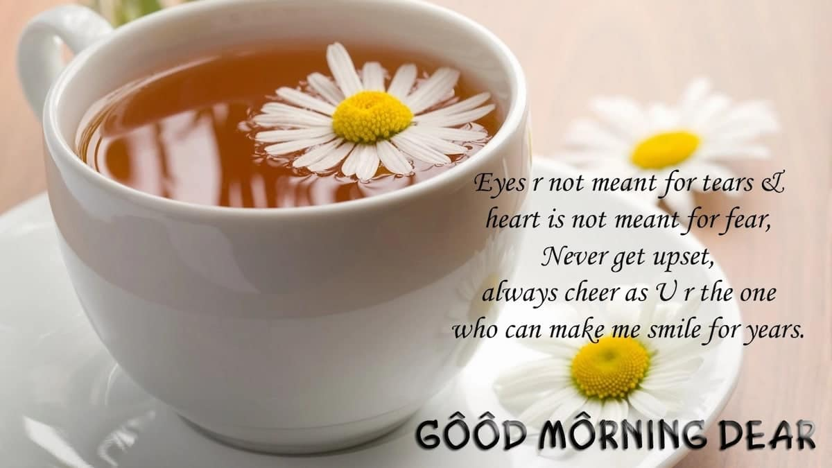 morning quotes love morning quotes to her morning quotes to him