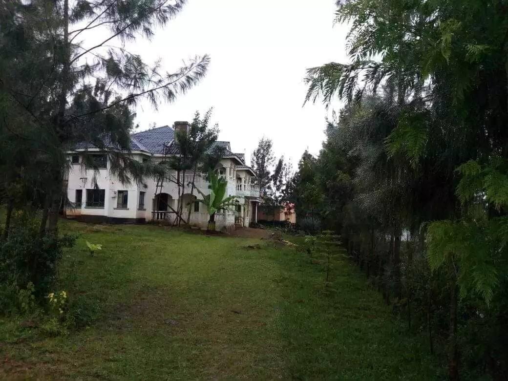 Migori female nominated MP Dennitah Ghati flaunts her multi-million rural home