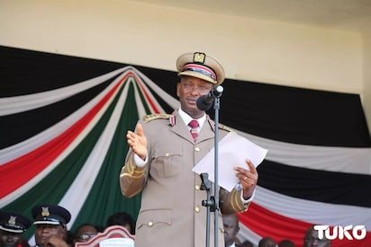 Trans Nzoia chang'aa brewers on spot for scaring away police with snakes during crackdowns