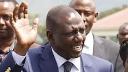 KRA Denies Summoning DP William Ruto Over Tax Evasion Claims