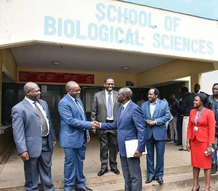 Ruto defends his PhD thesis on effects of land grabbing and human activities on riparian land