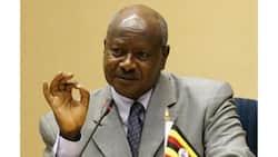 Rais Museveni, 73, amekataa kuzeeka, tazama alivyosakata densi kwa mkiki (video)