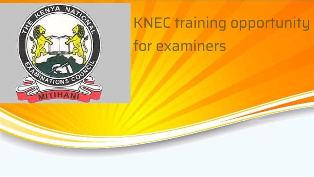 Knec contacts, Knec registration contact, Knec Kenya contacts