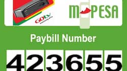 GOtv M-Pesa paybill number: How to pay for subscription in Kenya