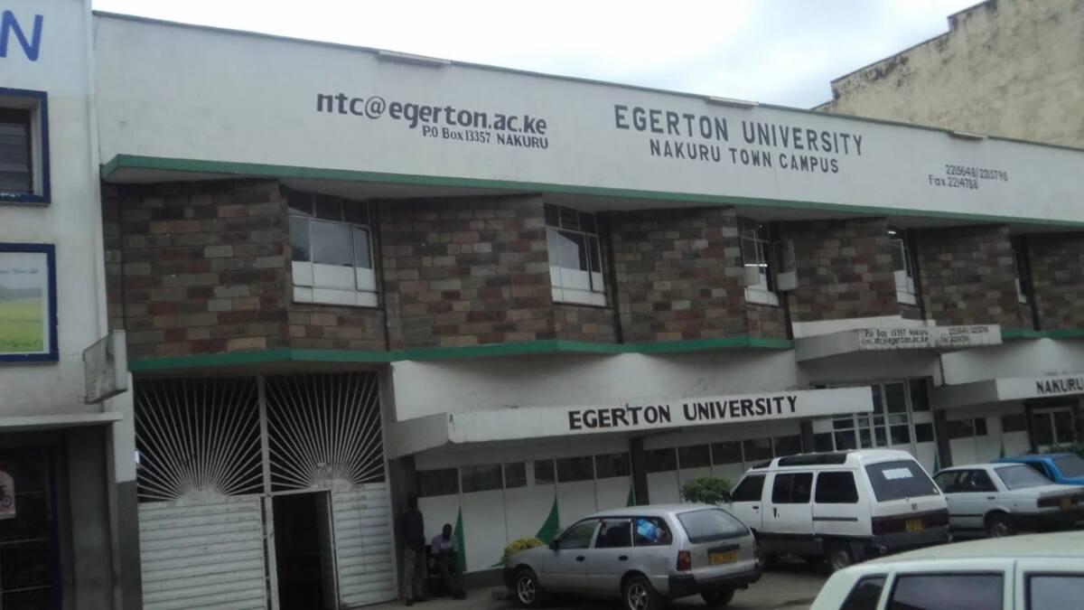 Egerton University Diploma Courses