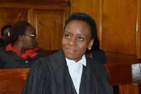 DCJ Mwilu will be represented by 44 lawyers