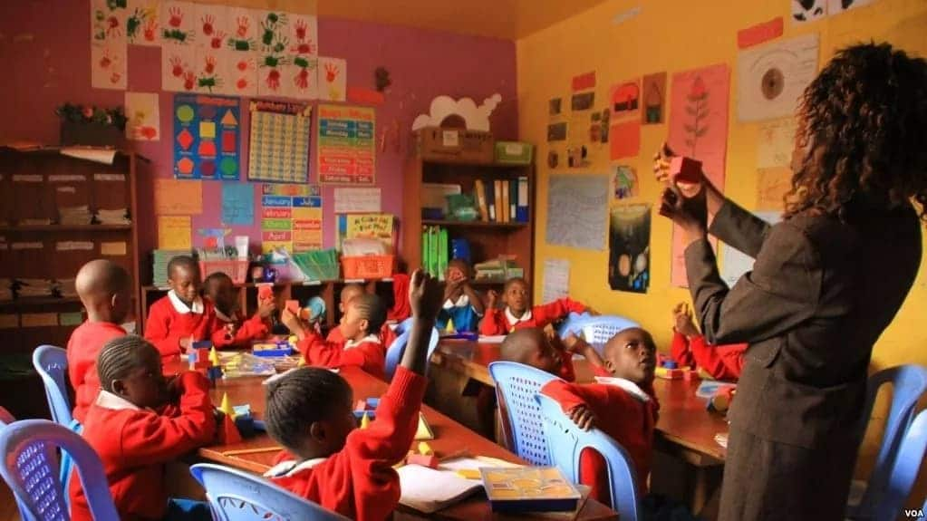 business ideas in kenya small business ideas in kenya business ideas kenya tuko works small scale business ideas in kenya
