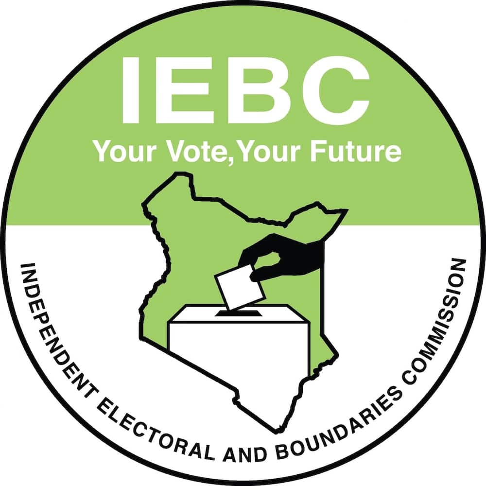 Image result for IEBC careers