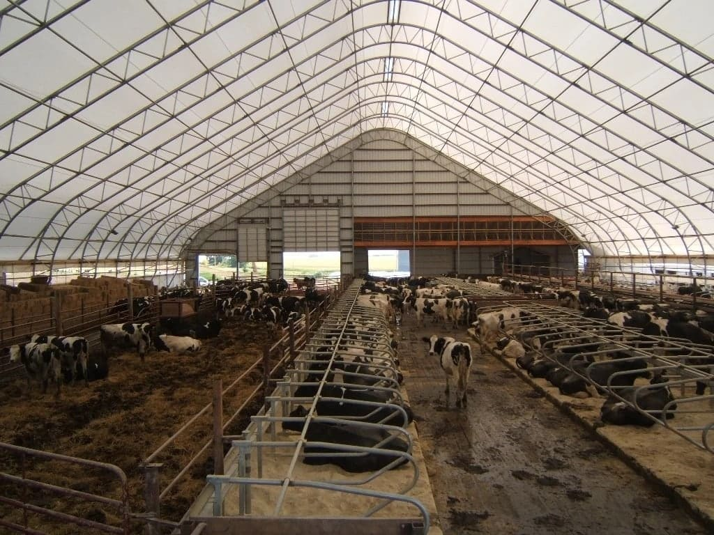 Dairy farm design and structure