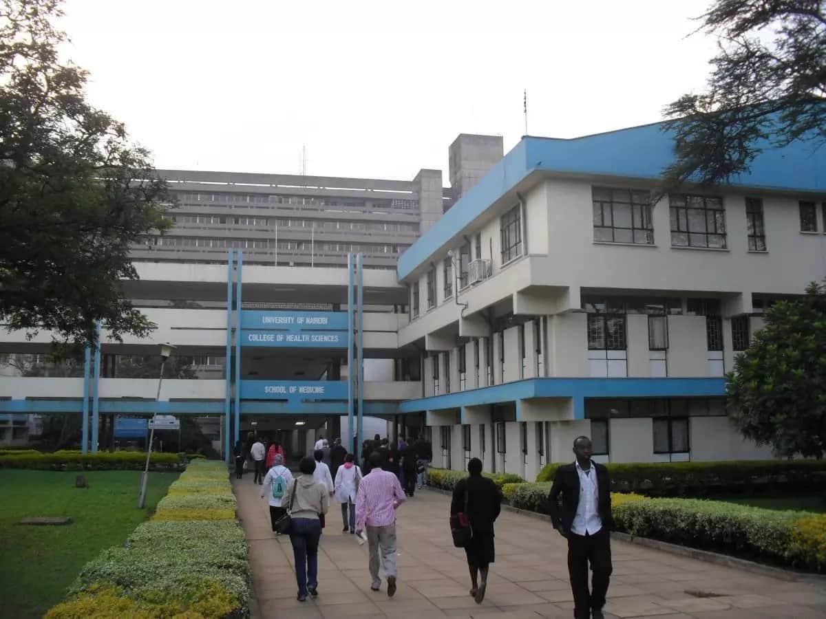 University of Nairobi School of Medicine: courses & FEE