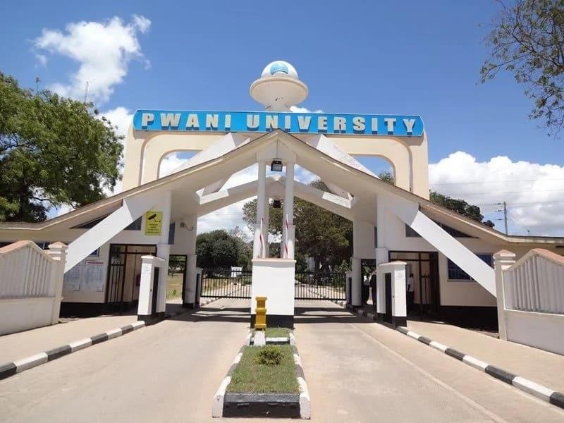 Bridging courses in Kenya