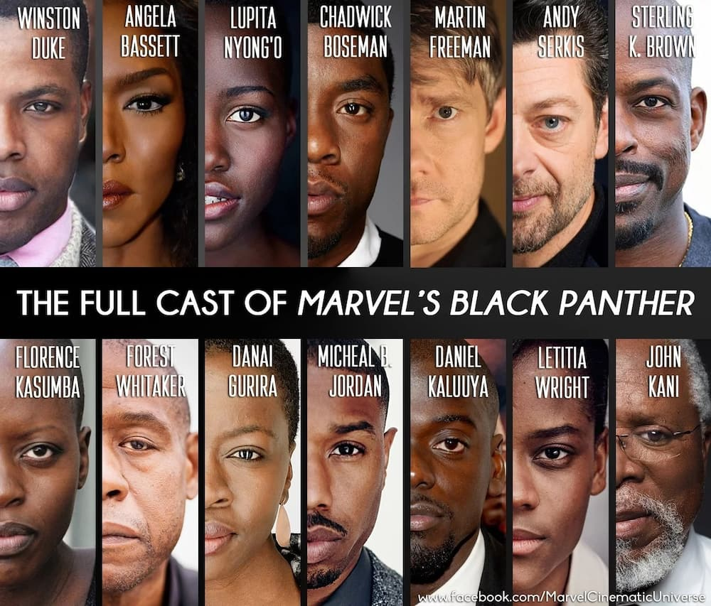 Black Panther Cast - Interesting Facts About the Cast