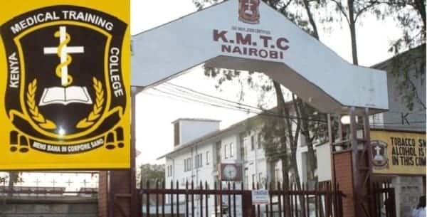 colleges in kenya colleges in nairobi list of universities in kenya best courses in kenya public colleges in kenya kenya colleges list of accredited colleges in kenya