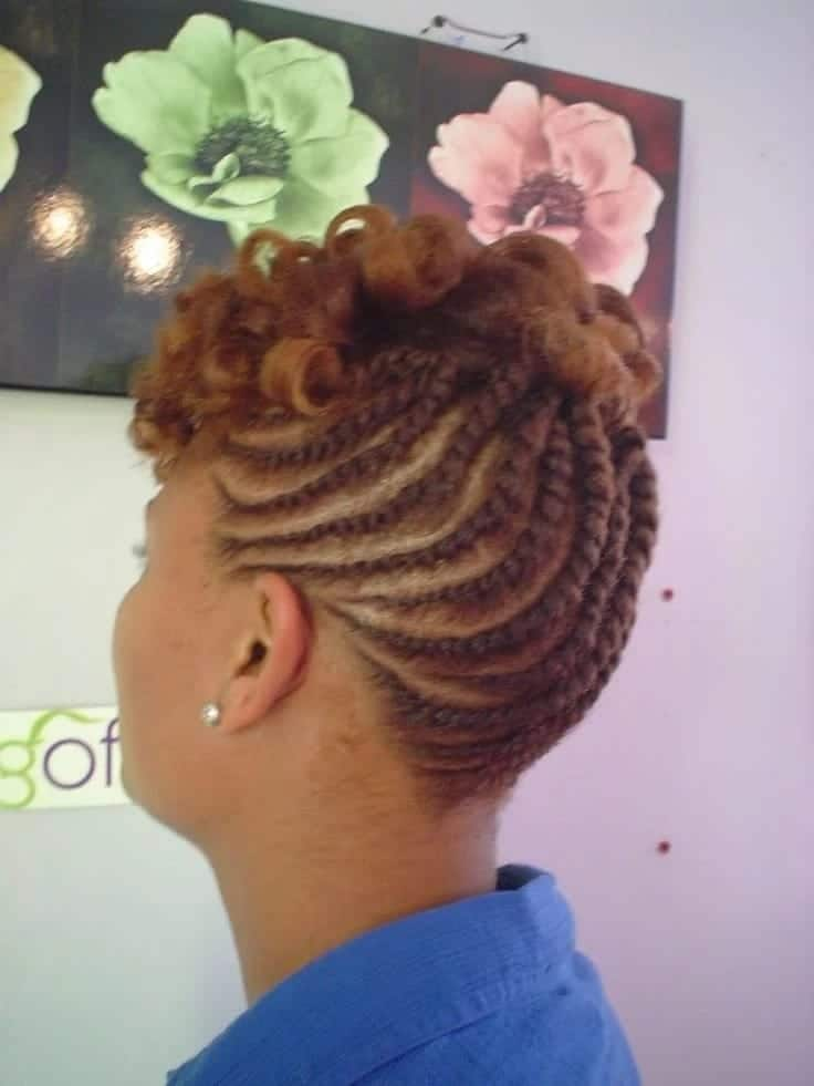 Swell 20 Cute Kinky Twist Hairstyles For Short Hair Tuko Co Ke Schematic Wiring Diagrams Amerangerunnerswayorg