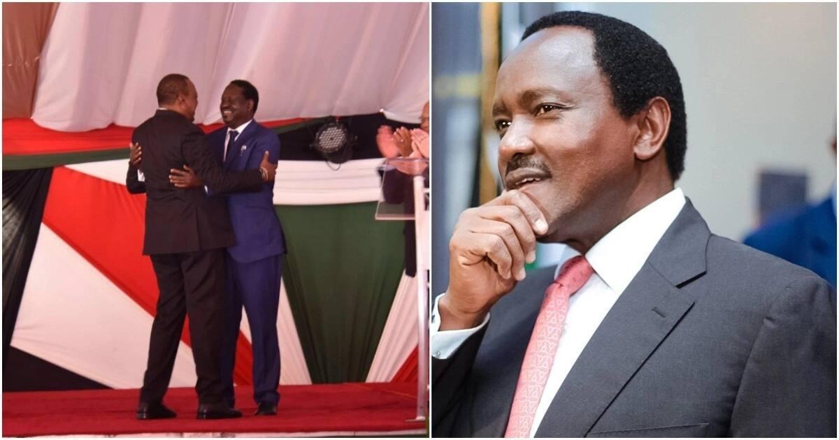 Kalonzo amtaka Raila kuwaomba Musalia na Wetangula msamaha