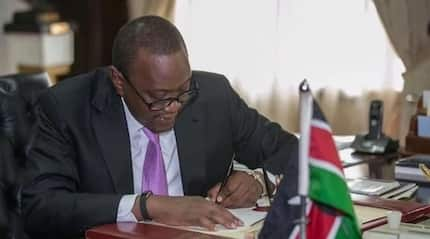 MPs did a marvellous job in setting in motion Uhuru's plan for 500,000 affordable housing units by 2022