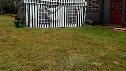 Aggrieved Moi University students vow to paralyse learning for learning in tents