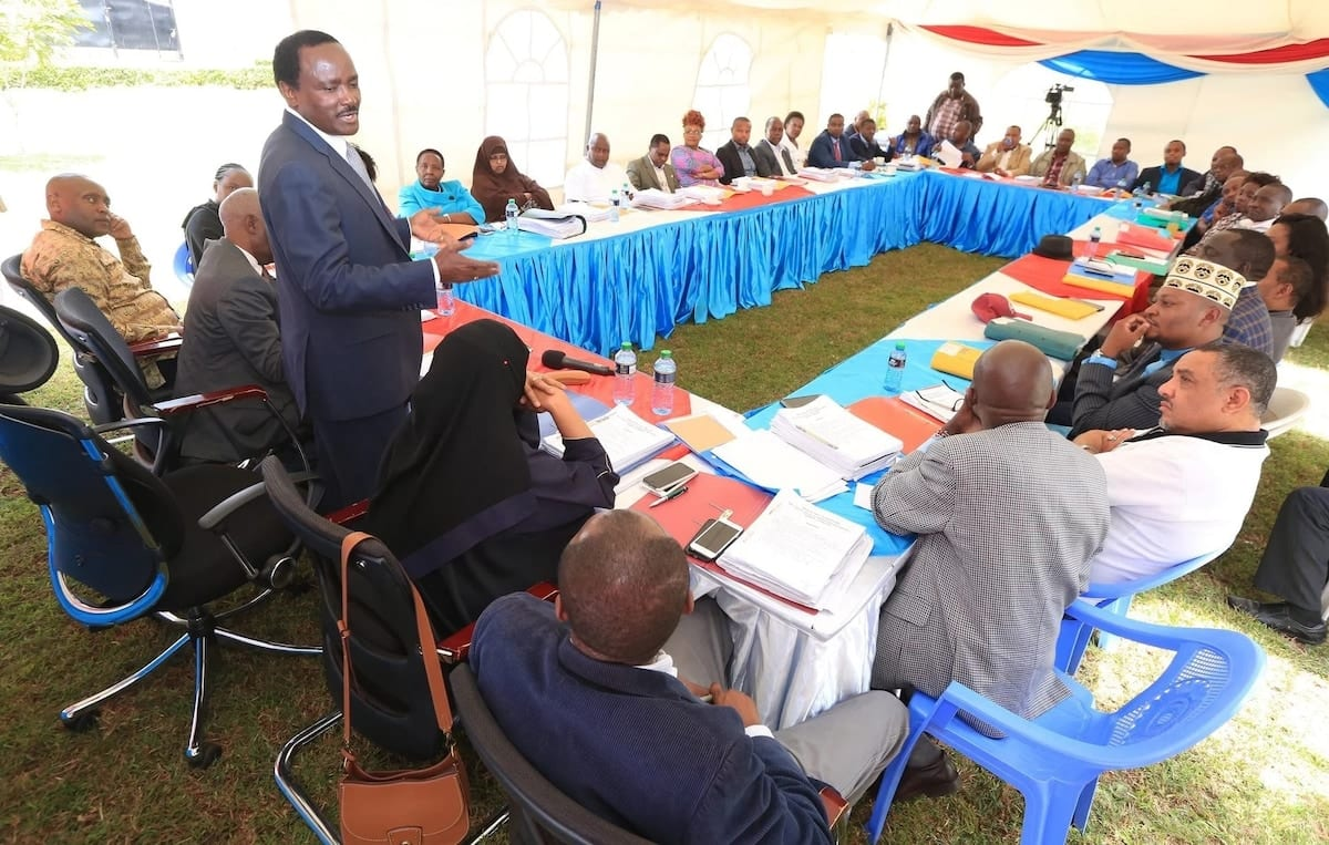 Kalonzo's ally roots for government of national unity as Wiper joins Jubilee, ODM