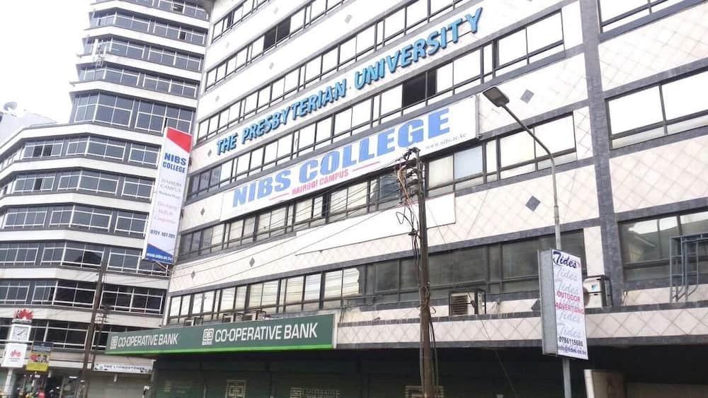 Nibs Nairobi institute of business studies