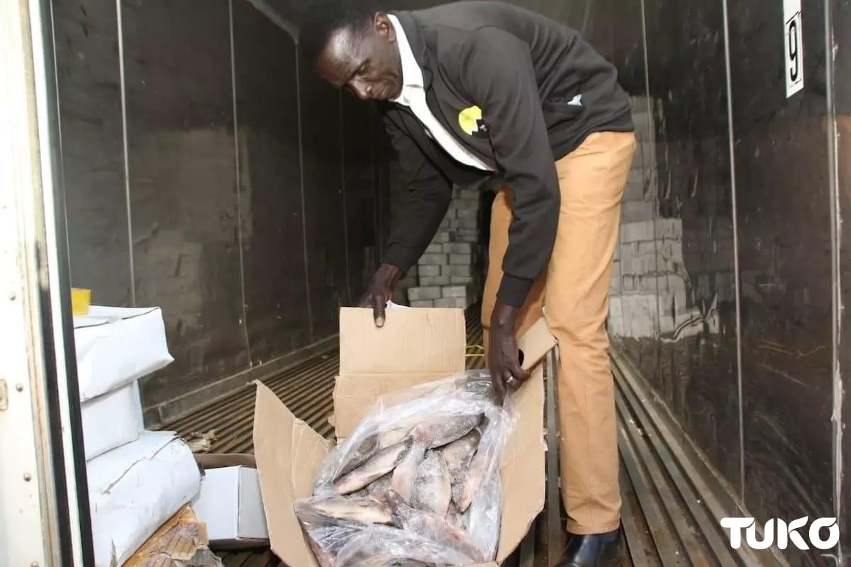 Uasin Gishu Governor Mandago confronts dealers offloading illegally imported, rotting Chinese fish in Eldoret