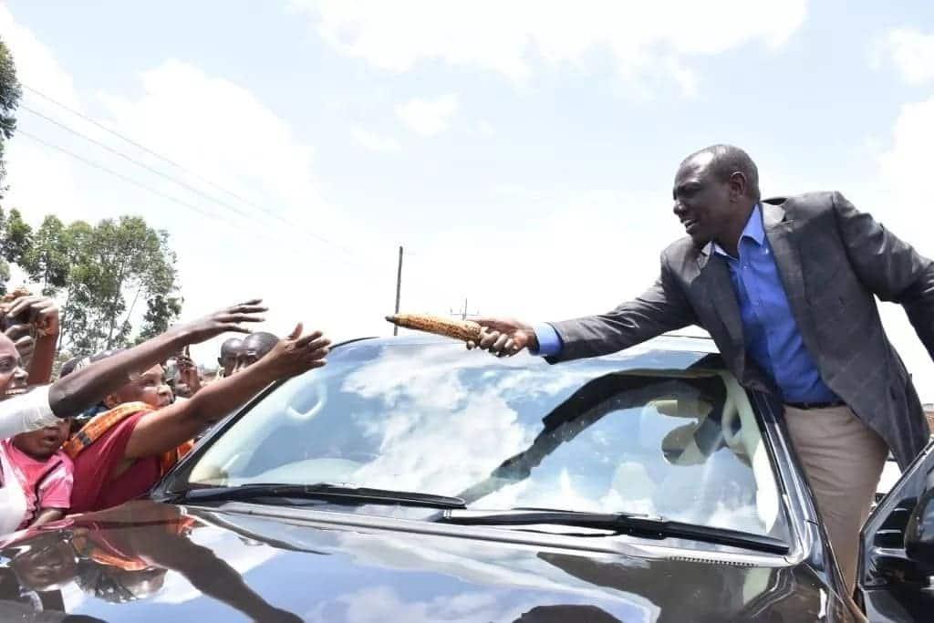 Hatua ya Ruto ya hivi punde yathibitisha kweli yeye ni hustler
