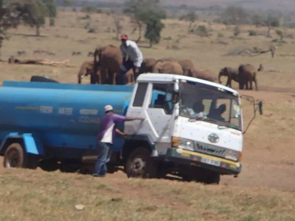 Man who delivers water at Tsavo