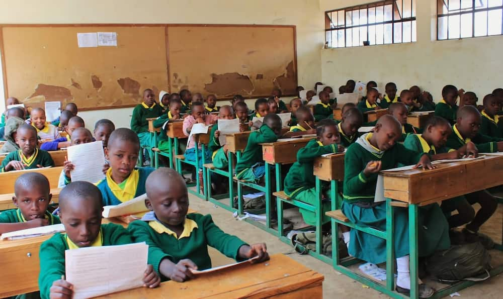 form one admission letters, ministry of education form one selection,how to check form one selection online