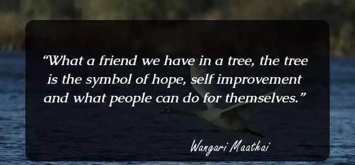 Wangari muta maathai quotes, Famous wangari maathai quotes, Prof wangari maathai quotes