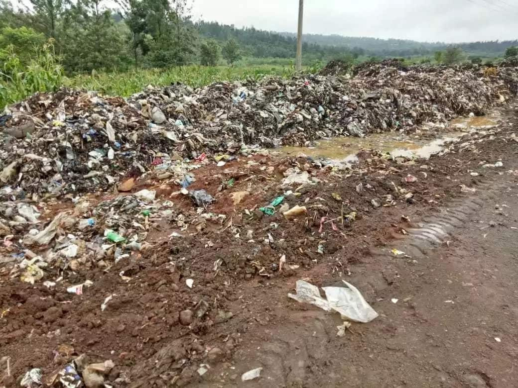 Murang'a residents in pain as maggots mysteriously grow out of their skins
