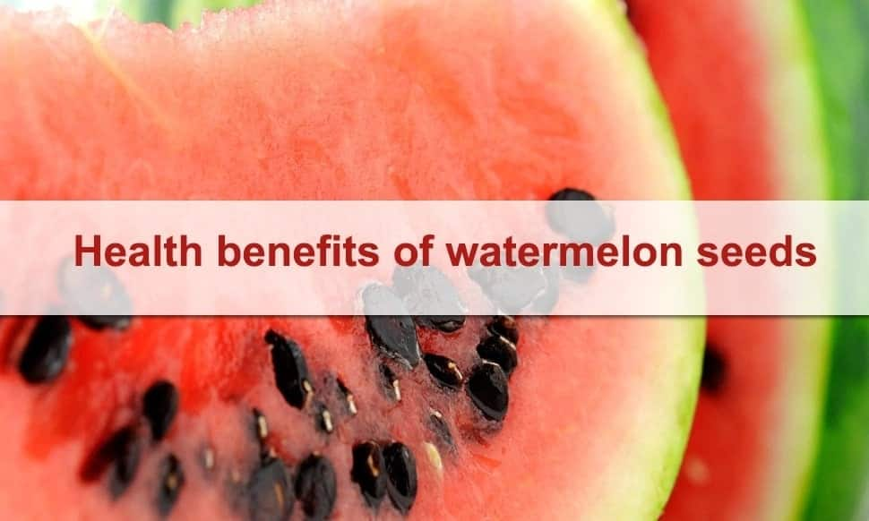 benefits watermelon seeds during benefits other benefits of watermelon seeds are watermelon seeds good for you