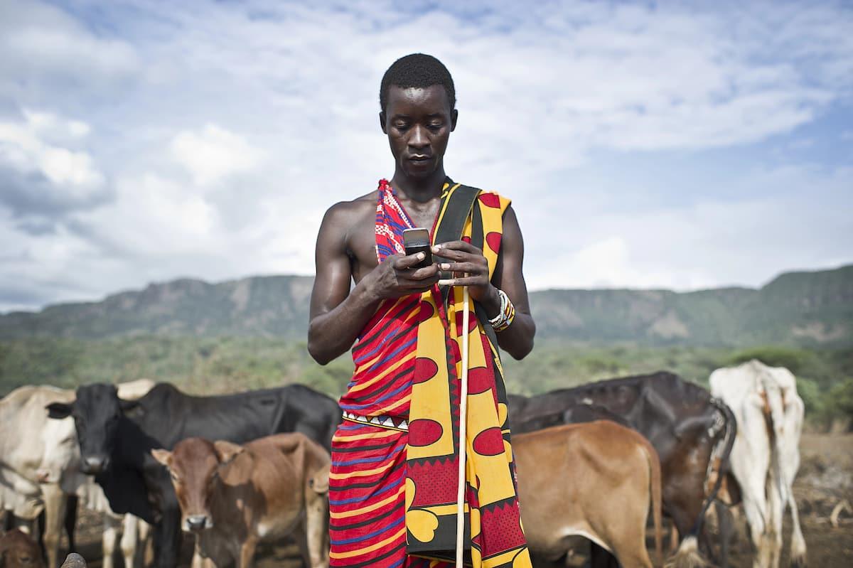 Smart dairy farming in Kenya