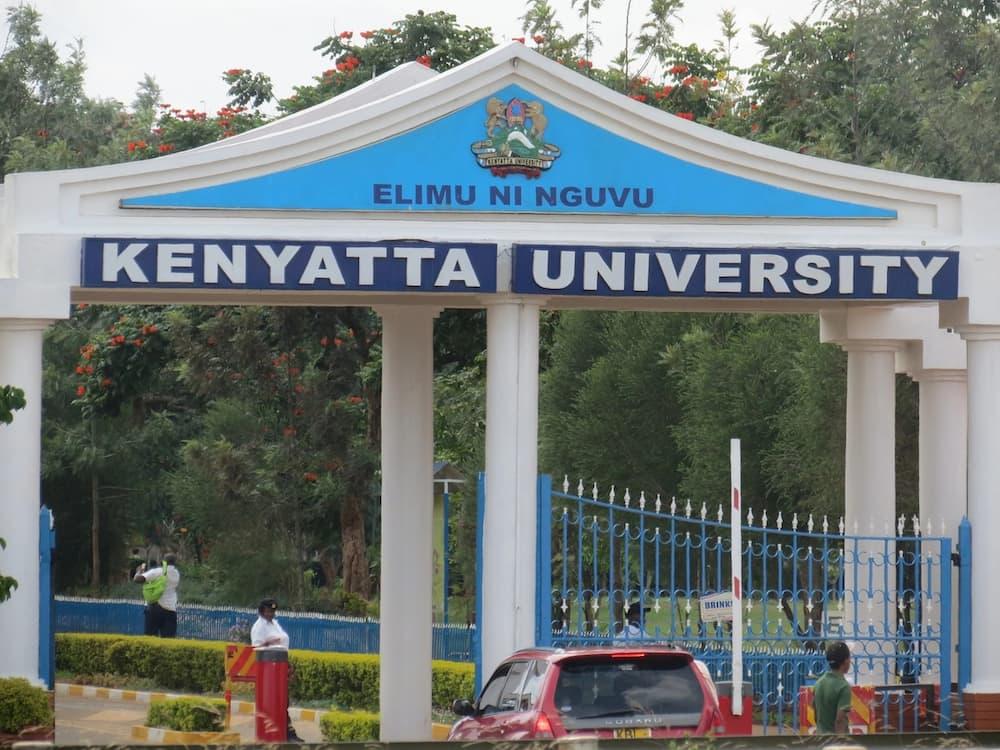 phd scholarships in kenya 2018 - phd scholarships for women in kenya - graduate scholarships in kenya - phd scholarships in kenyan universities