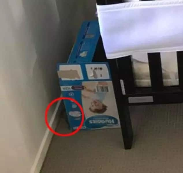 Horror as father finds venomous snake lurking just inches away from baby's cot
