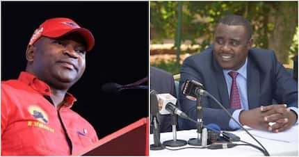 Echesa na Malala walishirikiana kuwatapeli wanasisa kabla kukosana? Mazungumzo ya simu yasambaa