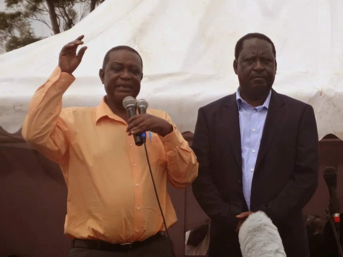 Nduguye Raila Odinga atuma ombi la kuteuliwa katika mbunge la Afrika Mashariki