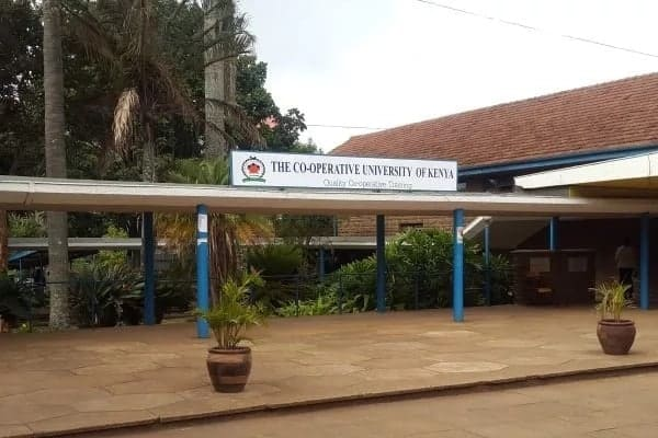 admission letter for cooperative university cooperative university college of kenya admission letter cooperative university admission letter 2018 download admission letter for cooperative university