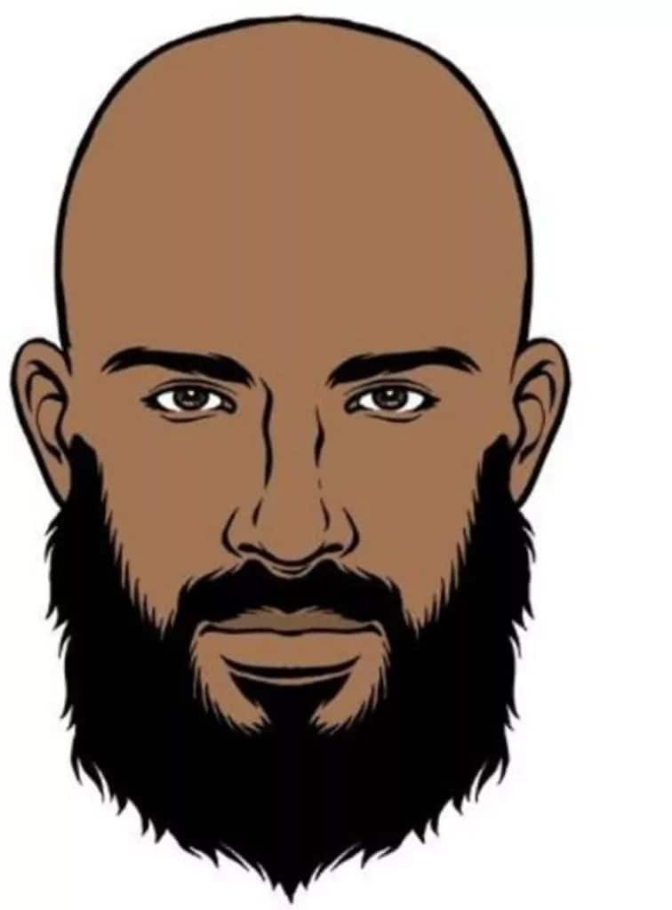 how to grow a beard The Ducktail beard style