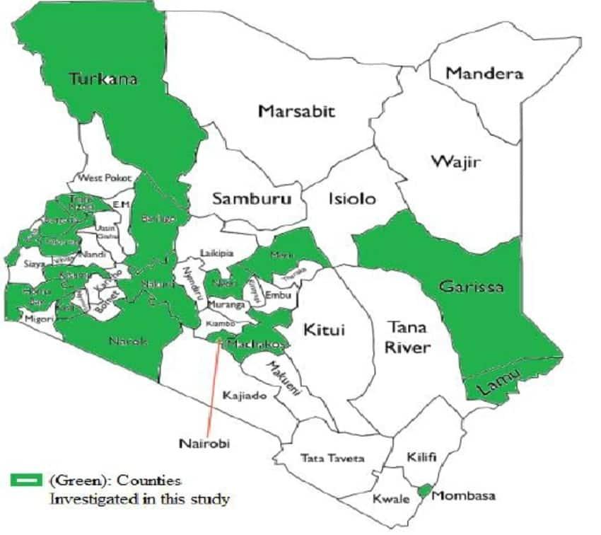 Largest County in Kenya in Potion & Wealth in 2019 ▷ Tuko.co.ke on constitution of kenya, ecuador county map, vice-president of kenya, kenya map showing counties, local authorities of kenya, kenya map detailed, argentina county map, cabinet of kenya, kenya colony map, national assembly of kenya, kenya town map, locations of kenya, israel county map, kenya ethnic map, administrative divisions of kenya, el salvador county map, kenya topographical map, speaker of the national assembly of kenya, guam county map, kenya police map, kenya route map, russia county map, kenya district map, kenya political map, manitoba canada county map, iran county map, kenya county jobs, kenya industry map,