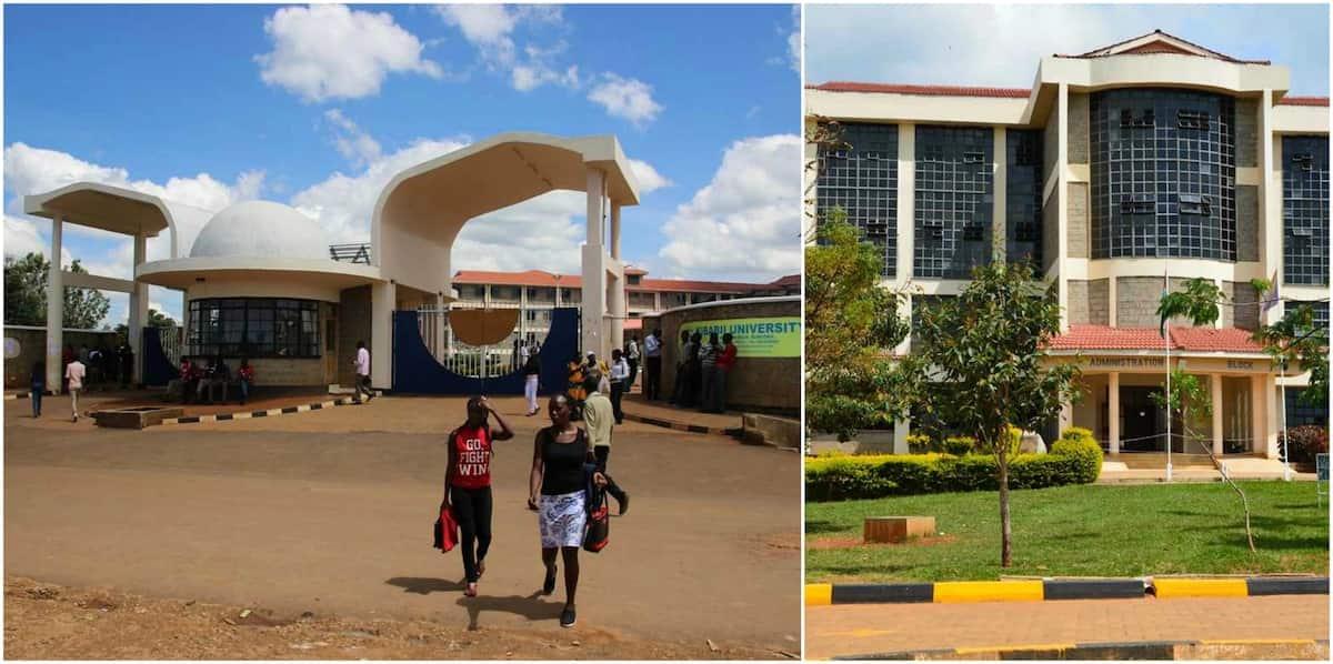 Kibabii university college courses, fee structure & application Kibabii University College course Kibabii University College fee structure