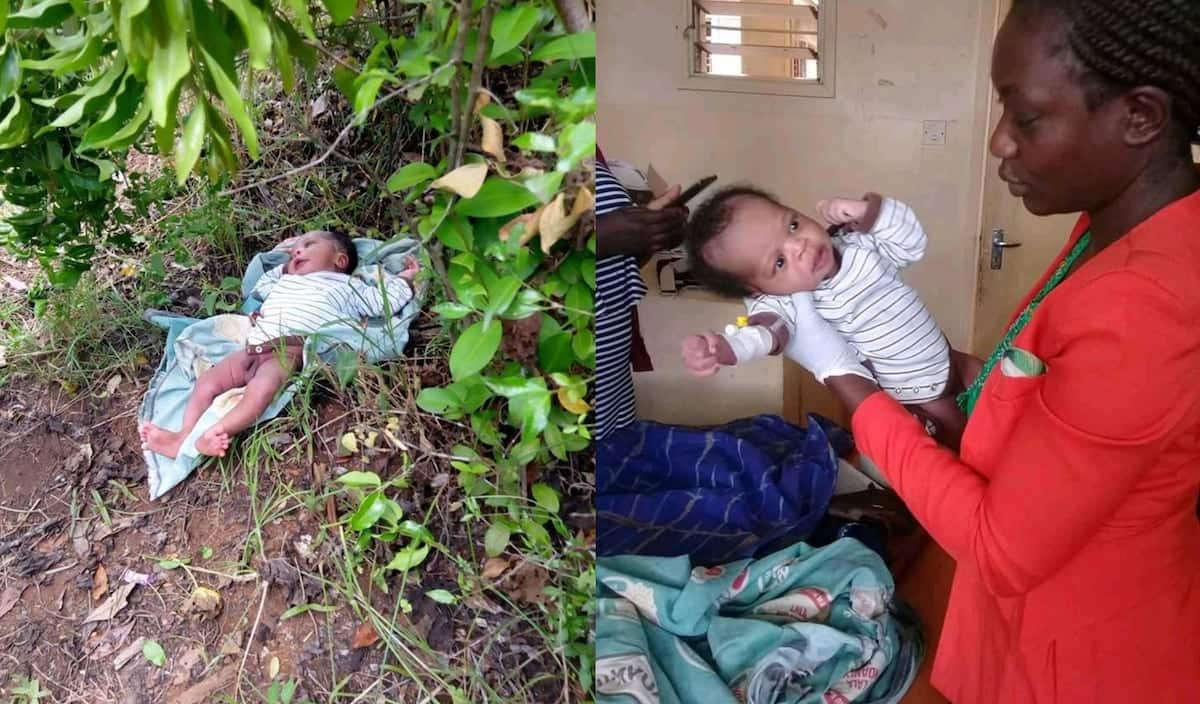 Joy as baby boy dumped in a thicket in Busia is rescued