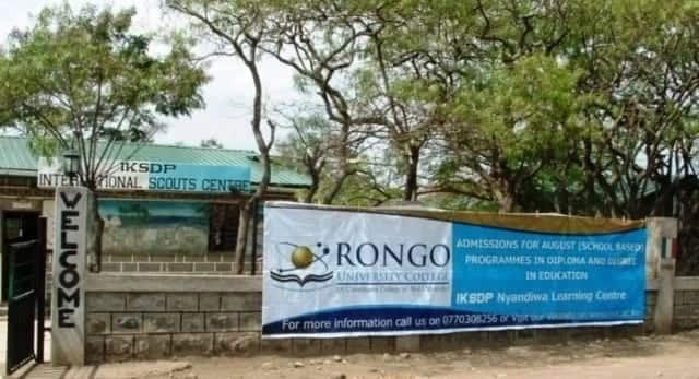 Rongo university college application form Rongo university college courses offered Courses offered at rongo university college