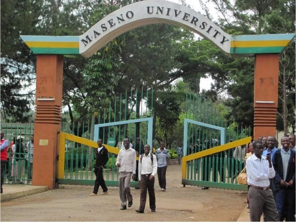 Maseno university admission letter download Maseno university admission letter Download maseno university admission letter