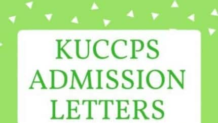 KUCCPS admission enquiry: How to check your course