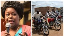 Most Nyanza youth are boda boda operators, Mbita MP says amid outrage over Auma Obama's gonya gonya comment