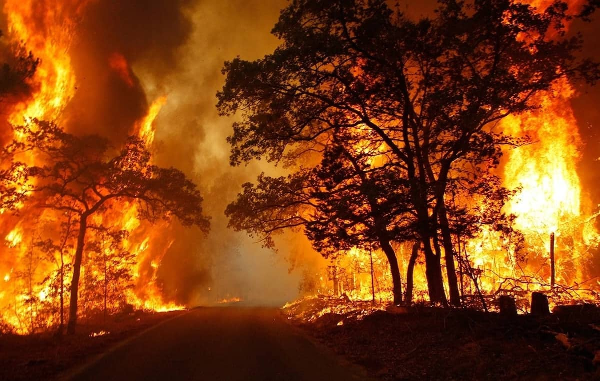 Causes of natural disasters in south Africa Recent natural disasters South Africa natural disasters pictures Biggest natural disaster in south Africa What natural disasters happen Latest south african natural disasters