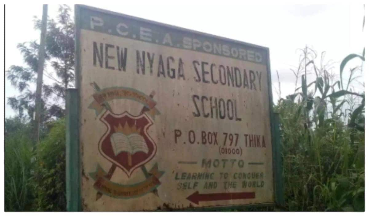 6 missing Form Four Murang'a girls found living with men in Thika